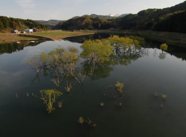 横川ダム 白い森おぐに湖