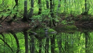 温身平 温身の池3